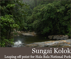 Hala Bala National Park Sungai Kolok