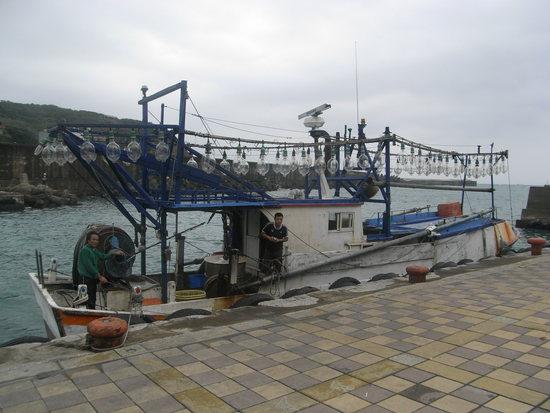 ye liu harbour