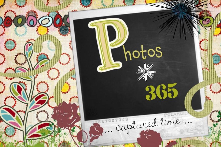 photos {365}