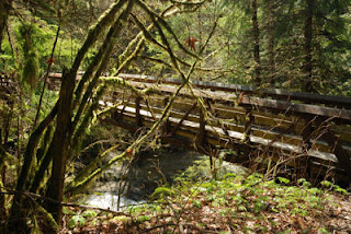Kanaka Creeek Regional Park, Maple Ridge, BC, Canada