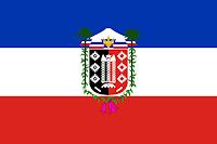 Bandera Novena región