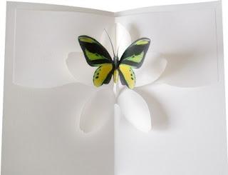 Πεταλούδα σε κάρτα 2