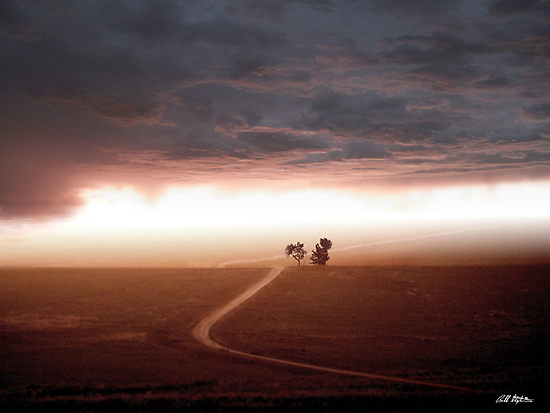 [1560417-2-the-road-less-traveled.jpg]