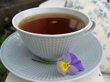 Vill du ha en kopp te?