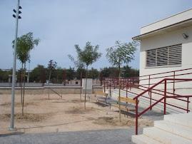 CURSO 2008-2009. EL PROYECTO SE NOTA EN EL COLE