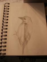 The Woodpecker Photo