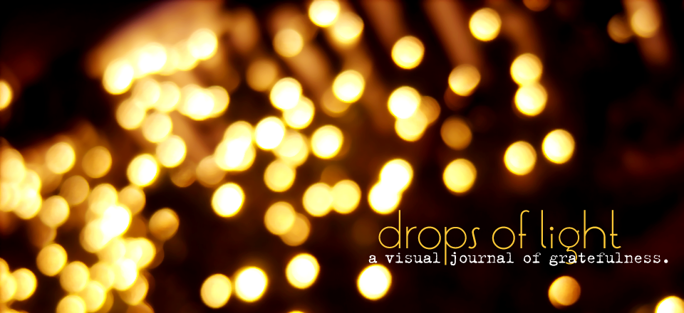drops of light  { a visual journal of gratefulness }
