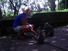 Feeding Monkeys in Thailand