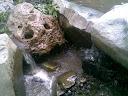 Barranca del Tigre en Iramuco