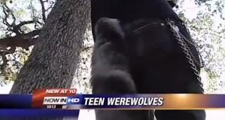Colas de lobos disfraz