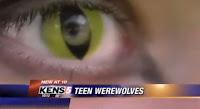 Ojos contacto lobos