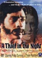 Como ladrón noche película