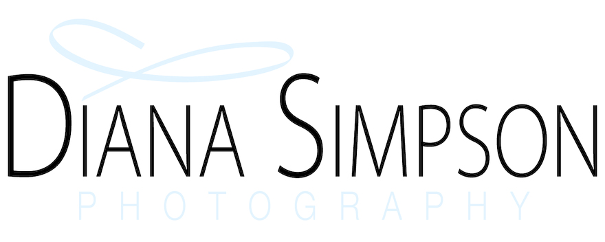Diana Simpson Chattanooga's Newborn & Baby Photographer
