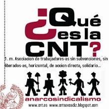 ¿que es la CNT?