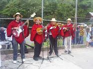 música andina en la comunidad...