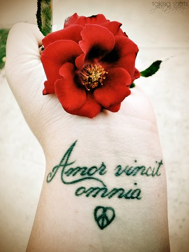 The source of Latin tattoos is the innumerable phrases and words that have