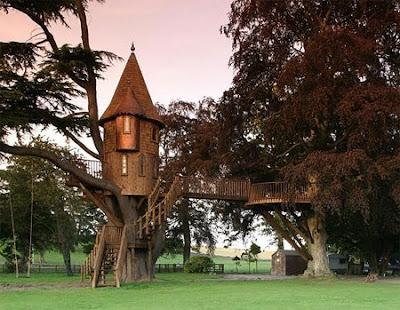 FOTO :Rumah Pohon yang Bagus dan Unik - VIVAforum