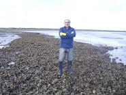 Banco de ostras salvajes en San Blas