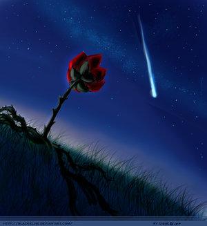 A Hullócsillag is csak azért esik le az égről, mert a szerelme átverte!
