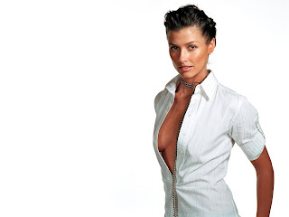 Free non watermarked wallpapers of Bridget Moynahan at Fullwalls.blogspot.com