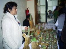 Mercedes Aguilera y su trabajo en madera de Cactus