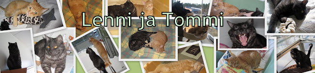 Lenni ja Tommi
