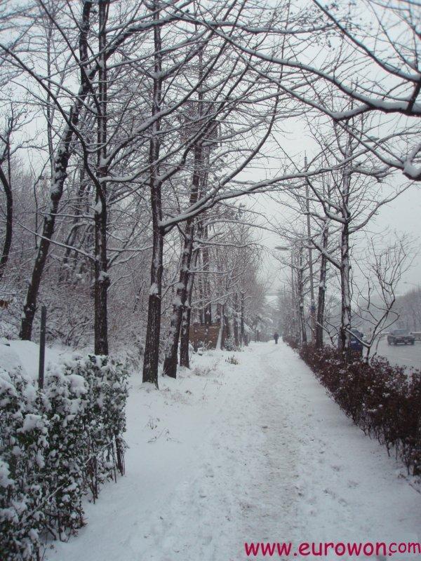 Nieve en la carretera a Gwanaksan en Seúl