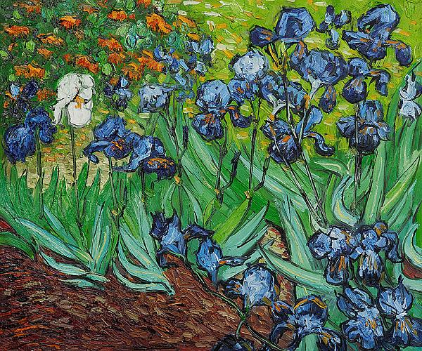 Famousbiographies artists for Van gogh irises