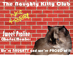 The Naughty Kitty Club