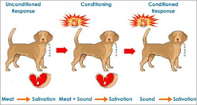 A Blog For English Lovers: Dogs and Science: The Conditioned Reflex