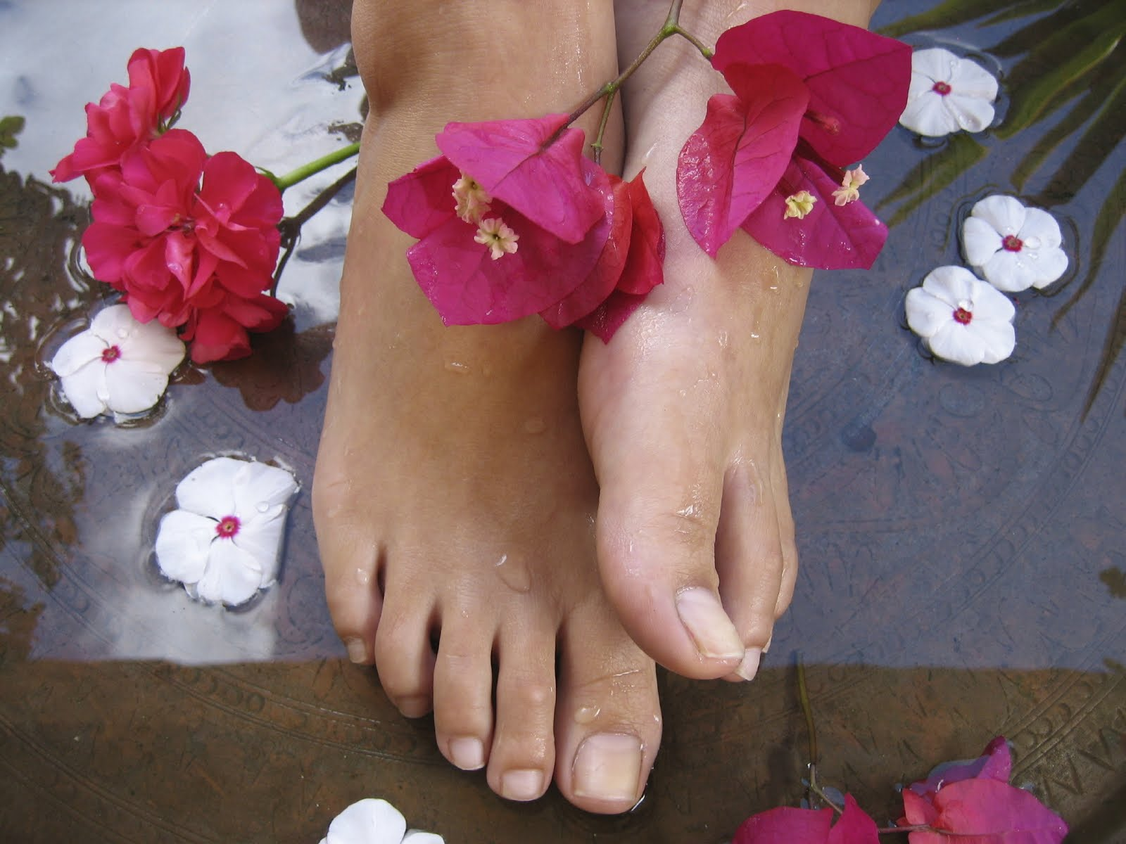 A blog for english lovers november 2009 for Foto piedi donne famose