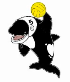 With only 4 months to go until the Gay Games, London Orca water polo team ...