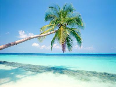 beautiful beaches wallpaper. Beautiful Beaches Wallpaper