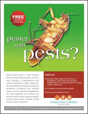 madras pest control flyer design 1