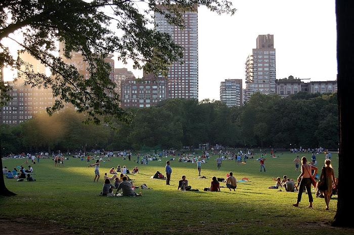 y su gran pulmón: ¨Central Park¨