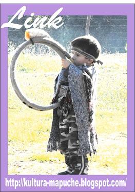 http://kultura-mapuche.blogspot.com/