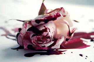 Si quieres una rosa roja