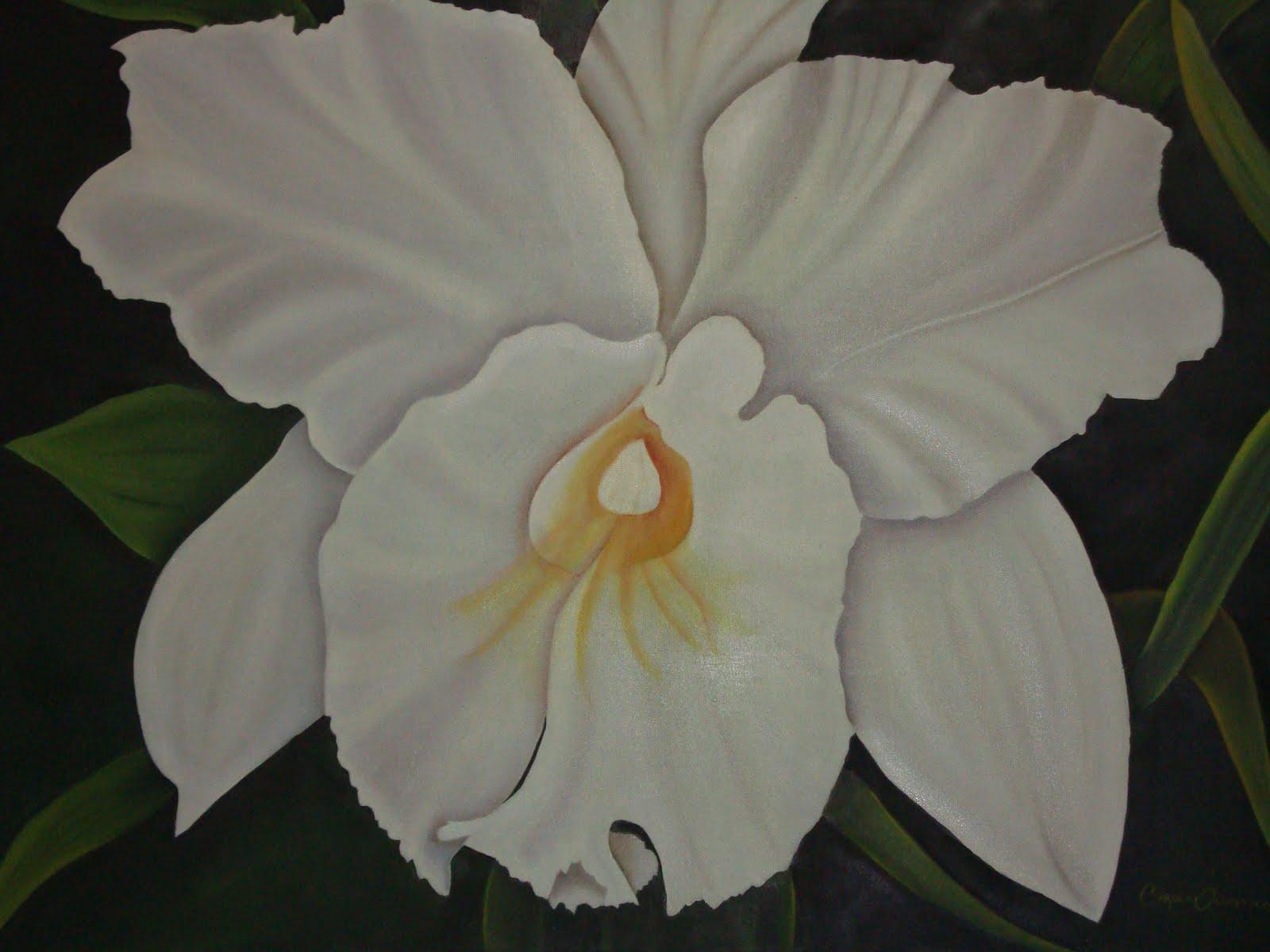 Orquídea en óelo