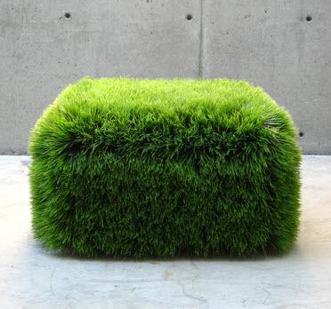 เก้าอี้หญ้า