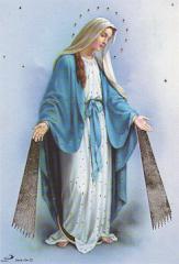 Virgen de la Milagrosa, Patrona de la Congregación