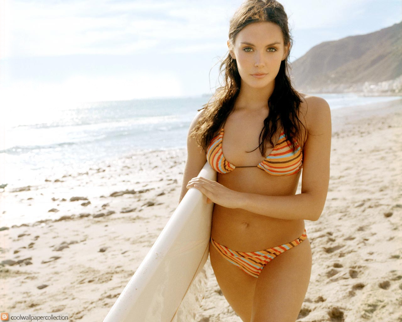Hot Bikini Girls : Taylor Cole