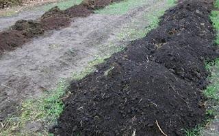 Торф с перегноем на поверхности для посадки винограда