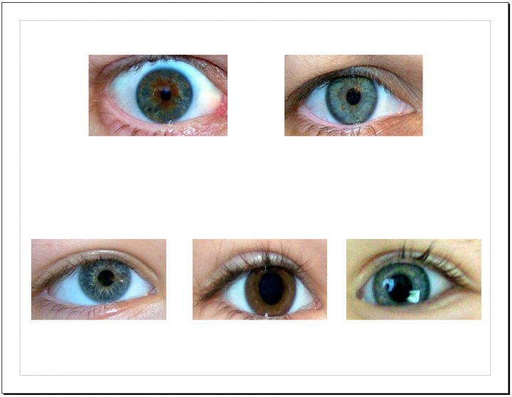 Salabencher: Eye Color