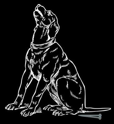 Stop Dog Nail Bleeding Home Remedy