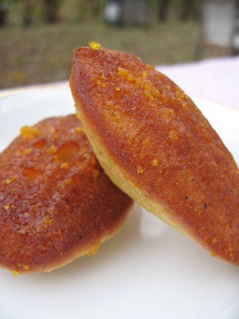 mmmmmm all day i dream about orange cardamom madeleines