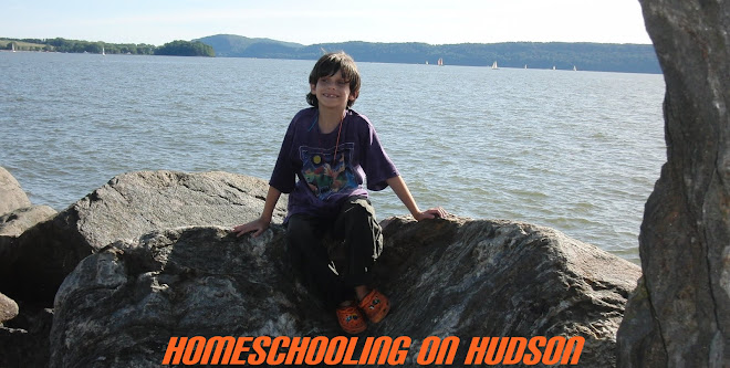 Homeschooling on Hudson 2010-20111