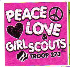 girl scout troop 273 welcome to junior girl scouts