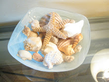 Everyone should have a bowl of hand picked sea shells