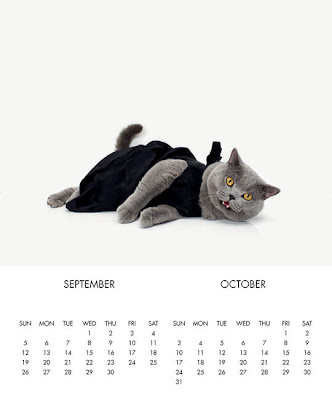 united bamboo 貓 名模 2011年貓咪月曆