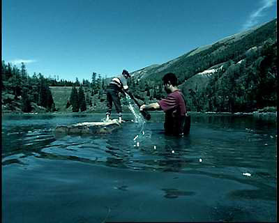 新疆喀�斯湖 湖怪